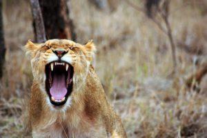 Θυμός: Φίλος ή εχθρός;